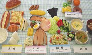 foodmodel